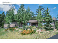 1221 Tall Pines Dr Estes Park CO, 80517