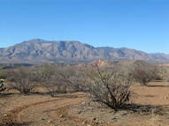 51 D  Moonshine Hill 4 Tonto Basin AZ, 85553