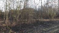 Lot 2 Tennessee St Lot #2 Spring City TN, 37381