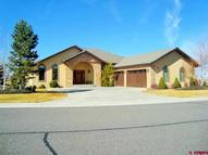 2691 Red Cliff Montrose CO, 81401