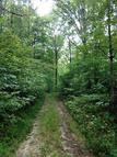 97 Acres Snake Hollow Rd. Sneedville TN, 37869