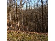 Lot 19r Shining Rock Path Lot 19r Horse Shoe NC, 28742