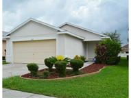 11239 Cocoa Beach Drive Riverview FL, 33569