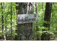 Lot 12 Echo Lane S Old Fort NC, 28762