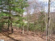 92 Moccasin Flower Trail Section 3 - Lot 92 Landrum SC, 29356