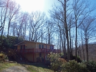 399 Old Chestnut Mountain Rd. Newland NC, 28657