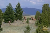 Lot 57 Pony Express Trail Ramsay MT, 59748