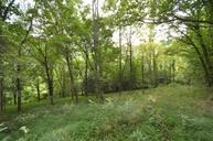 62 Bishop Hollow Ln Pleasant Shade TN, 37145