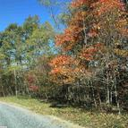 Lot 20 Peaksview Dr Williamsville VA, 24487