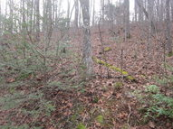 Lot 9 Trillum Trail 9 Franklin NC, 28734