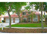 17833 Green Willow Drive Tampa FL, 33647