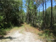 46 Ac County Road 353 Old Town FL, 32680