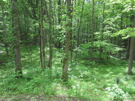 Lot 7 Eagles Cove Road Byrdstown TN, 38549