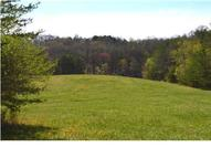 1 Turner Rd Sale Creek TN, 37373