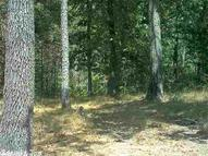 000 Sunny Slope Rd. Greers Ferry AR, 72067