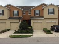 8726 Turnstone Haven Place Tampa FL, 33619