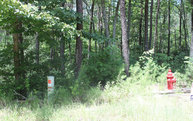 Lt 46 Solitude Lane Lot 46 Blairsville GA, 30512