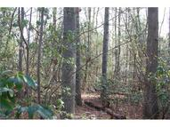 Lot #10 Larry Mcdonald Drive 10 Hendersonville NC, 28739