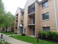 8700 West Evelyn Lane 301 Chicago IL, 60656