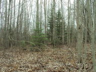 3629 Golfview Drive Lot 71 Wolverine MI, 49799