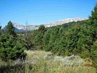 Bridger Canyon Road Wilsall MT, 59086