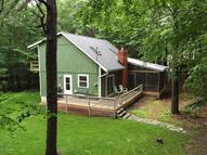 133 Squirrel Rd Dingmans Ferry PA, 18328