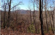 Lot14 Owltown Vista Lot 14 Blairsville GA, 30512
