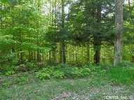 00 Hawkinsville Rd Woodgate NY, 13494