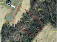 Lot 15 Fred East Pleasant Garden NC, 27313