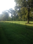 Lot 5 Frenchtown Acres Road Greenwell Springs LA, 70739