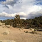 Lot 9 Potato Peak Road Inyokern CA, 93527