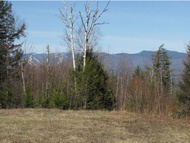 Lot #12 Worcester Ridge Road Lake Elmore VT, 05657