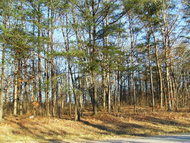 7.71 Ac Baker Mountain Road Spencer TN, 38585