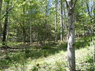 Lot 7 Pisgah Forest Drive Pisgah Forest NC, 28768