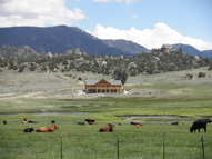 19905 Nachtrieb Ranches Road Nathrop CO, 81236