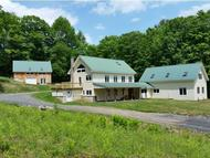 315 Deer Ridge Rd Townshend VT, 05353