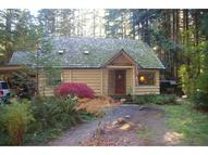 55662 Mckenzie River Dr Blue River OR, 97413