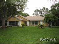 6 Dusty Miller Ct. Homosassa FL, 34446