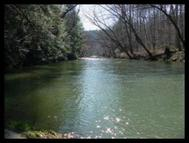 Obed Pines Rd Crossville TN, 38571