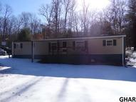 40 Mount Hollow Road Mc Clure PA, 17841