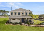 11167 Spring Point Circle Riverview FL, 33579