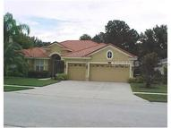 2110 Chestnut Forest Drive Tampa FL, 33618