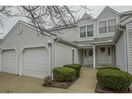 9423 Preakness Dr Unit: D Northfield OH, 44067