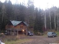 3383 S Trail Canyon Rd Soda Springs ID, 83276