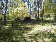 11307 Black Forest Road Lead SD, 57754