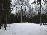 Johnny Martins Trail 5 Acres Beaver Island MI, 49782