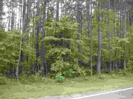 Lot 1 Providence Road(1.17acres) Lot 1(1.17 Acres) Forest City NC, 28043