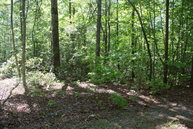 Lot 11 Echo Lane South Old Fort NC, 28762