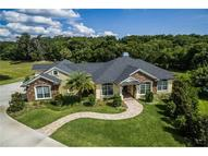 7333 Chesterhill Circle Mount Dora FL, 32757