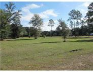 Lot 1 Palmetto Lane Moss Point MS, 39562